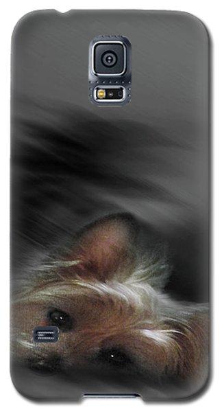 Yorkie Joy Painting Galaxy S5 Case