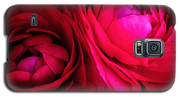 Gorgeous Sisters Galaxy S5 Case by Rachel Mirror