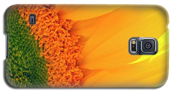 Gorgeous Sunflower Macro Galaxy S5 Case