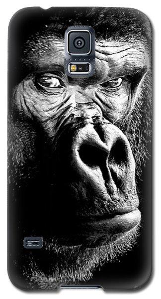Gorilla Canvas Print, Photographic Print, Art Print, Framed Print, Greeting Card, Iphone Case, Galaxy S5 Case
