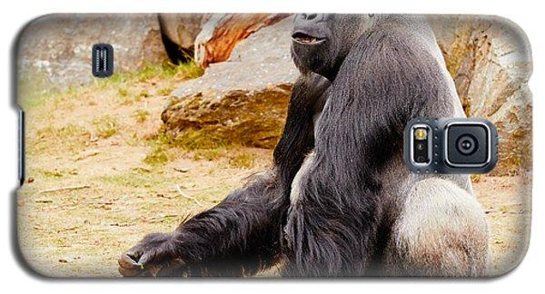 Gorilla Sitting Upright Galaxy S5 Case