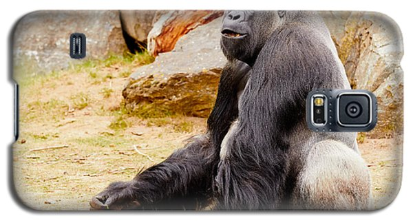 Galaxy S5 Case featuring the photograph Gorilla Sitting Upright by Nick  Biemans