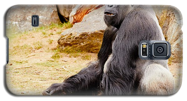 Gorilla Sitting Upright Galaxy S5 Case