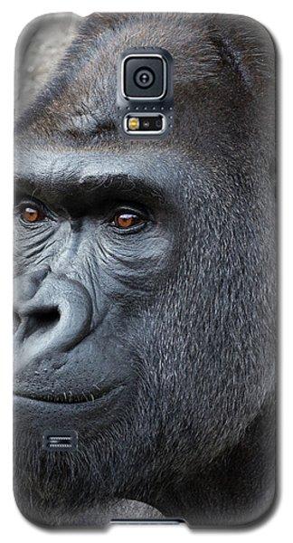 Gorillas In The Mist Galaxy S5 Case