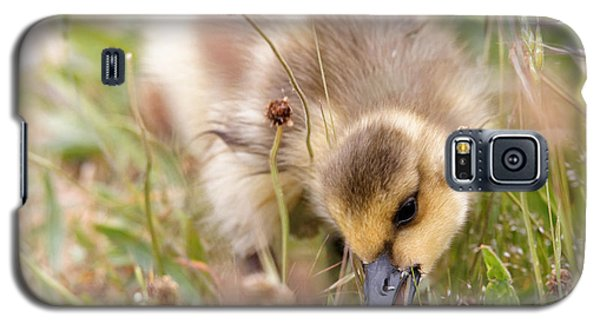 Gosling Nibble Galaxy S5 Case