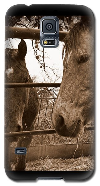 Galaxy S5 Case featuring the photograph Gossip At The Fence by Karen Musick