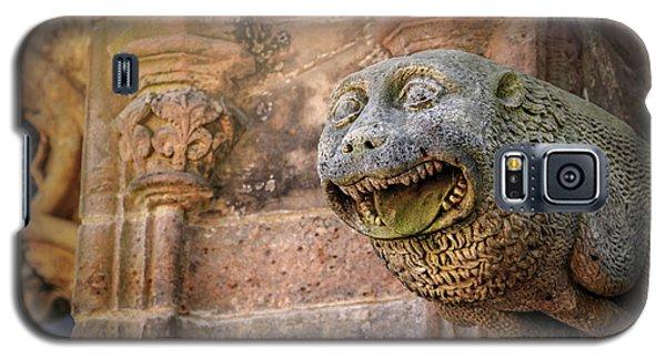 Gothic Gargoyle In Scotland Galaxy S5 Case
