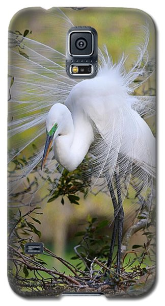 Grace In Nature Galaxy S5 Case
