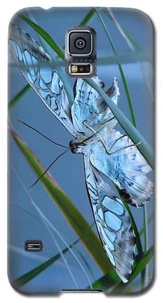 Galaxy S5 Case featuring the photograph Grace by Misha Bean