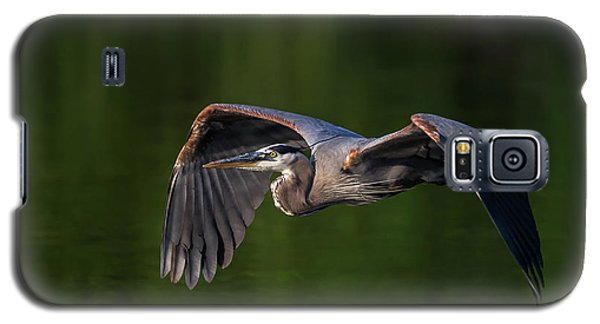 Galaxy S5 Case featuring the photograph Graceful Flight by Everet Regal