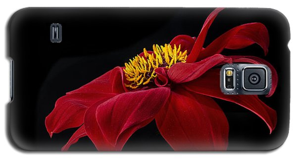 Galaxy S5 Case featuring the photograph Graceful Red by Roman Kurywczak