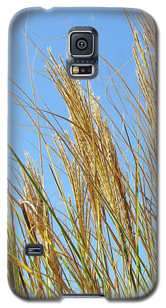 Grains Of Grass In The Wind Galaxy S5 Case by Bonnie Muir