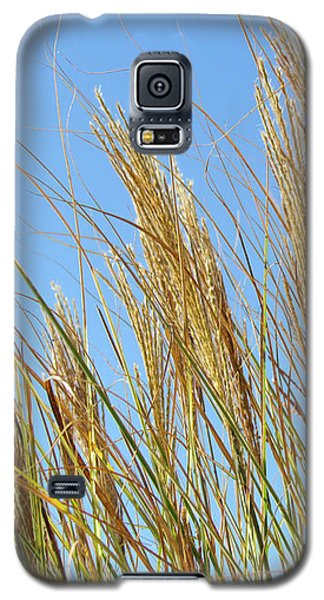 Galaxy S5 Case featuring the photograph Grains Of Grass In The Wind by Bonnie Muir