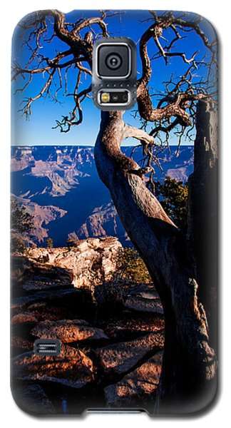 Grand Canyon 27 Galaxy S5 Case by Donna Corless