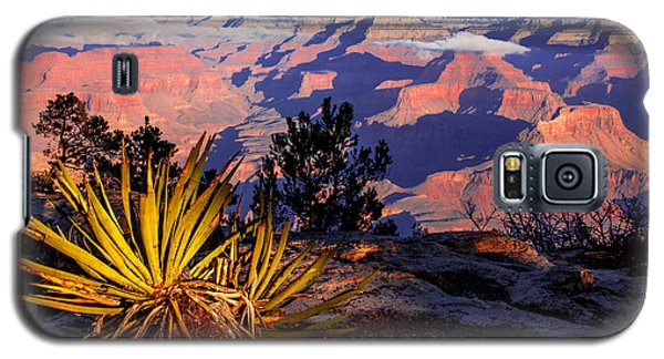 Galaxy S5 Case featuring the photograph Grand Canyon 31 by Donna Corless