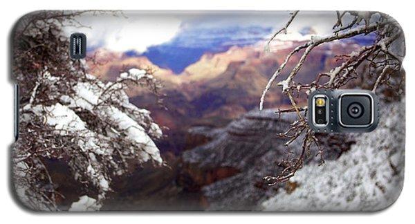 Grand Canyon Branch Galaxy S5 Case