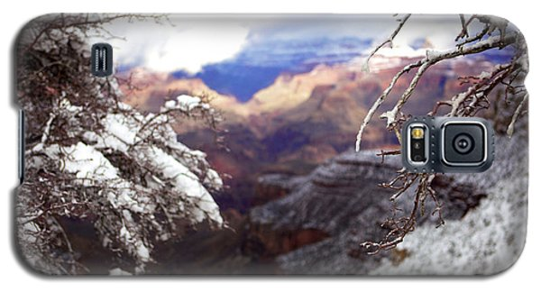 Grand Canyon Branch Galaxy S5 Case