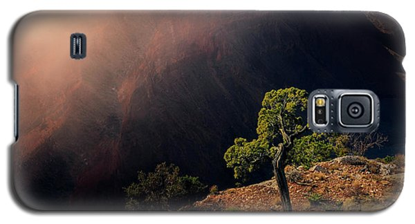Grand Canyon Juniper Galaxy S5 Case