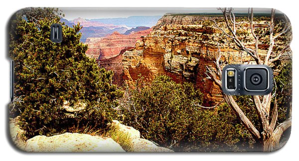 Grand Canyon National Park, Arizona Galaxy S5 Case