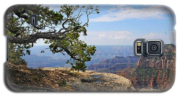 Grand Canyon North Rim Craggy Cliffs Galaxy S5 Case