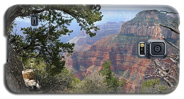 Grand Canyon North Rim - Through The Trees Galaxy S5 Case