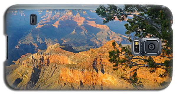 Grand Canyon South Rim - Pine At Right Galaxy S5 Case