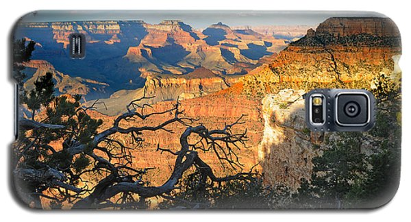 Grand Canyon South Rim - Sunset Through Trees Galaxy S5 Case
