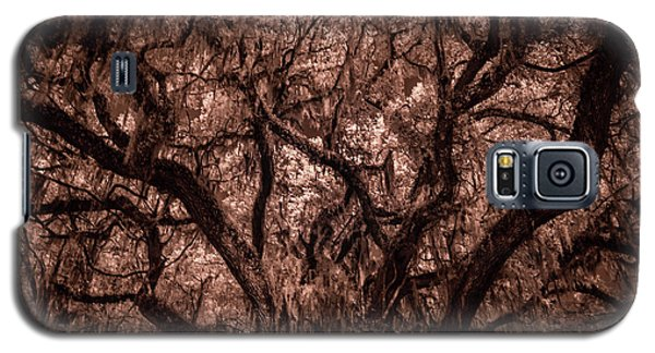 Galaxy S5 Case featuring the photograph Grand Daddy Oak Tree In Infrared by Louis Ferreira