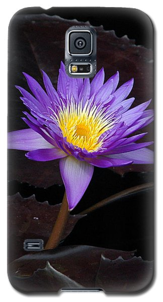 Galaxy S5 Case featuring the photograph Grand Entrance by Byron Varvarigos