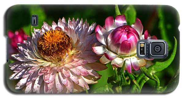 Galaxy S5 Case featuring the photograph Grand Opening - Before And After 001 by George Bostian