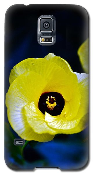 Galaxy S5 Case featuring the photograph Grand Opening by Debbie Karnes