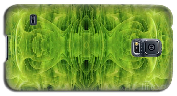 Grand Symphony Galaxy S5 Case by Tlynn Brentnall