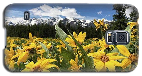 Grand Teton Mountains Galaxy S5 Case