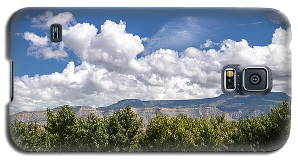 Grand Valley Orchards Galaxy S5 Case
