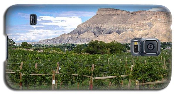 Grand Valley Vineyards Galaxy S5 Case