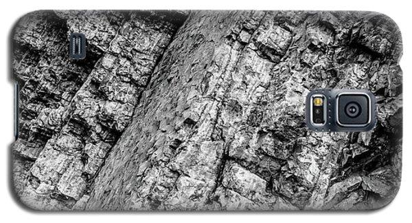Granite Slab Canadian Rockies Galaxy S5 Case