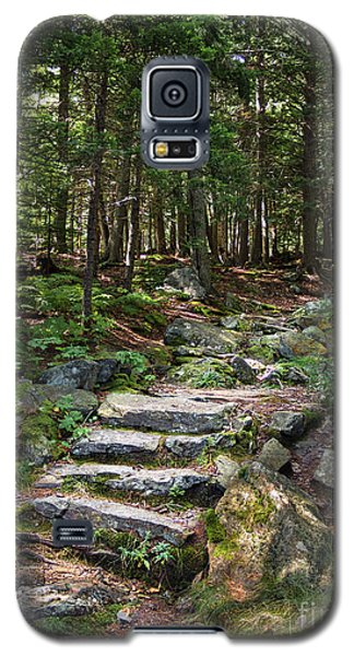 Galaxy S5 Case featuring the photograph Granite Steps, Camden Hills State Park, Camden, Maine -43933 by John Bald