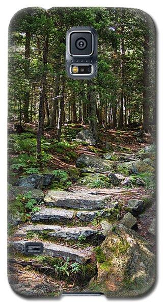 Granite Steps, Camden Hills State Park, Camden, Maine -43933 Galaxy S5 Case