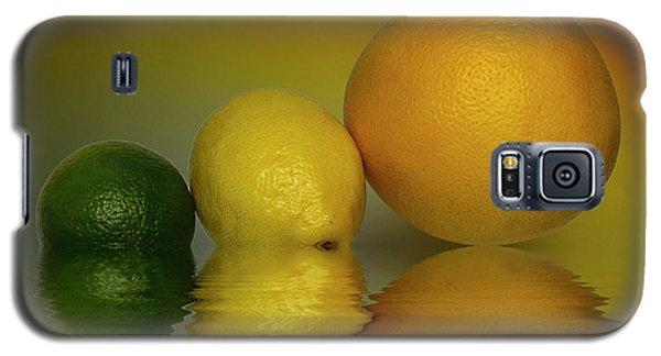 Galaxy S5 Case featuring the photograph Grapefruit Lemon And Lime Citrus Fruit by David French