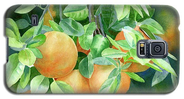Grapefruit With Background Galaxy S5 Case