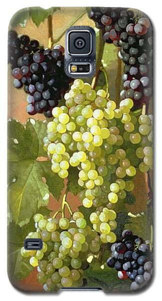 Grapes Galaxy S5 Case by Edward Chalmers Leavitt