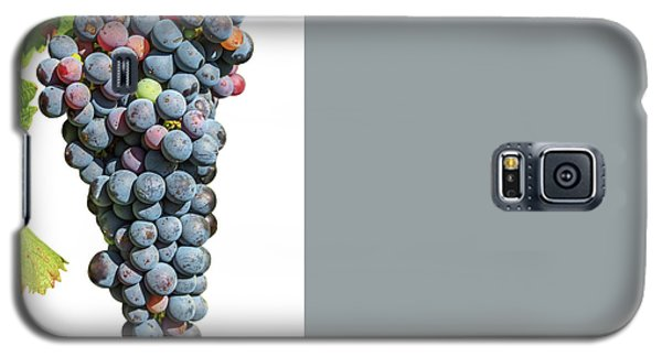 Grapes On Vine Galaxy S5 Case