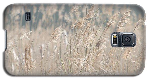 Galaxy S5 Case featuring the photograph Grass  by Gary Bridger