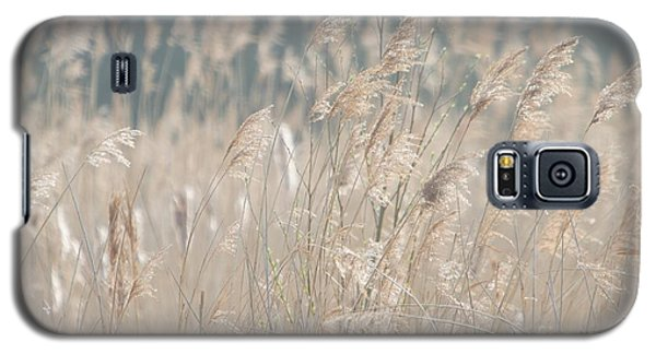 Grass  Galaxy S5 Case by Gary Bridger