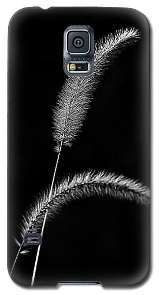 Grass In Black And White Galaxy S5 Case