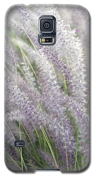 Galaxy S5 Case featuring the photograph Grass Is More - Nature In Purple And Green by Ben and Raisa Gertsberg