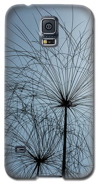 Grass Mandala Galaxy S5 Case by Jocelyn Kahawai
