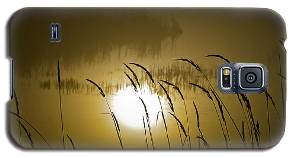 Grass Silhouettes Galaxy S5 Case