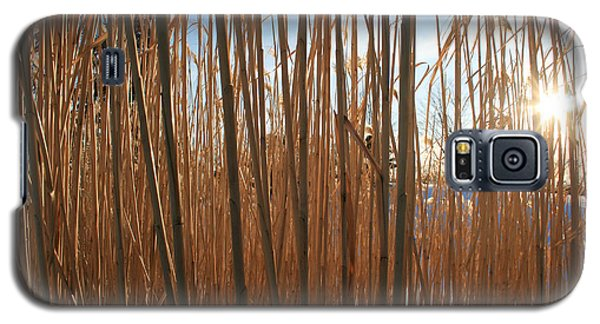 Grasses Galaxy S5 Case