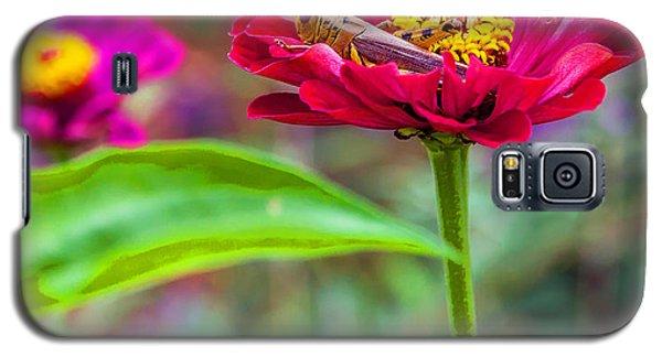 Galaxy S5 Case featuring the photograph Grasshopper And Flower by Edward Peterson